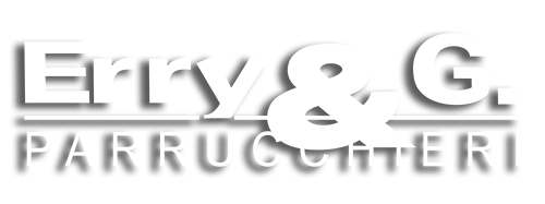 logo-erry-bianco2